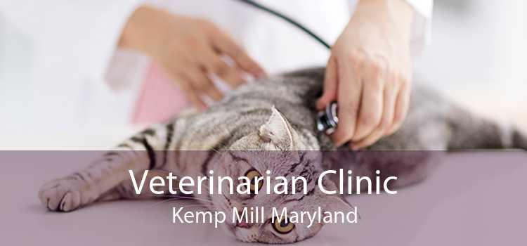 Veterinarian Clinic Kemp Mill Maryland
